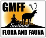GM Flora and  Fauna